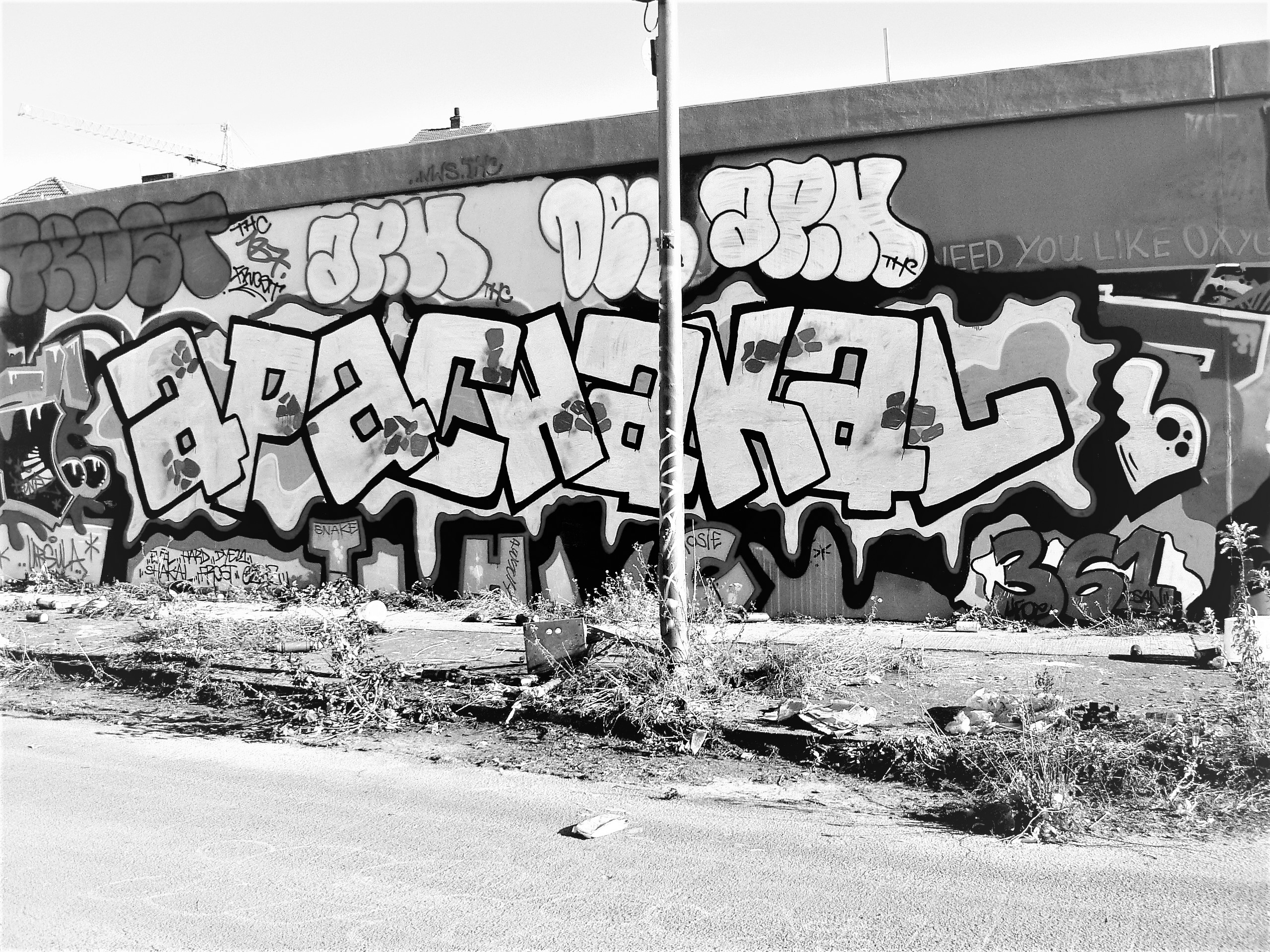 02550 | berliner mauern | berlin, graffiti, writing