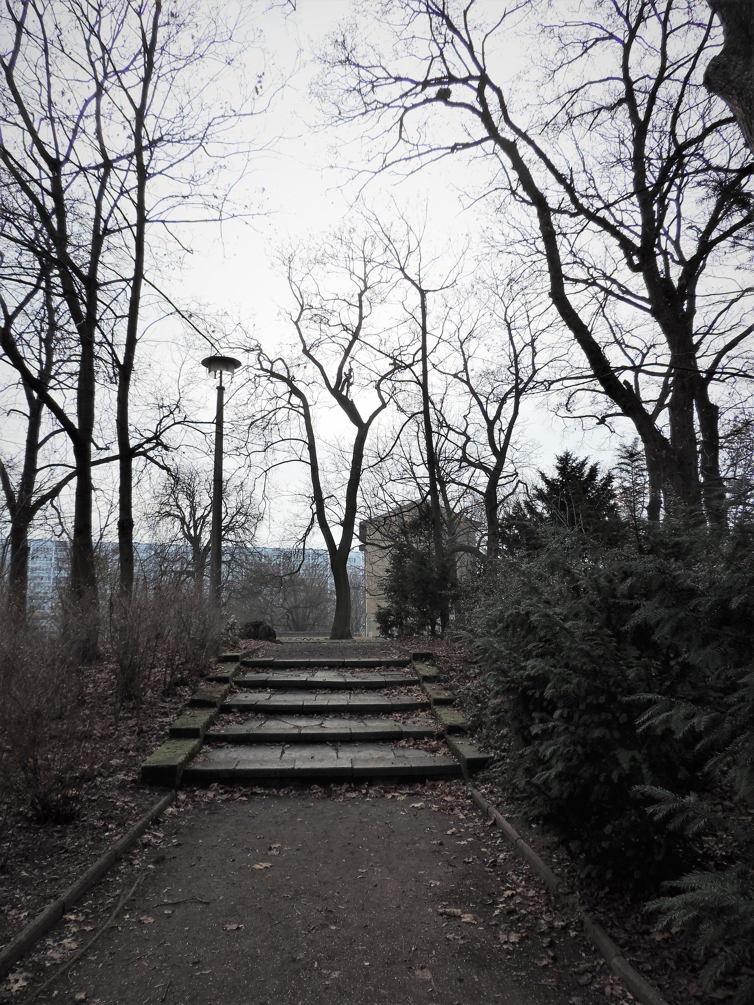 03351 | berliner mauern | berlin, this is not a beach, treppe