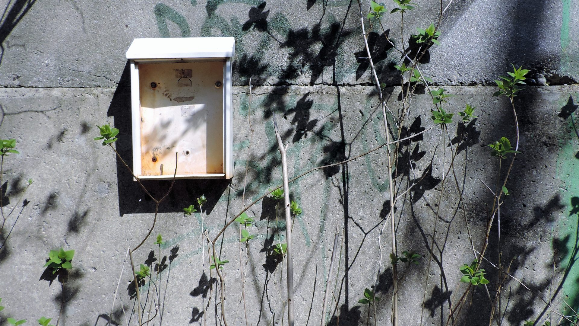 05132 | berliner mauern | berlin, can you smile again for me?, mailbox