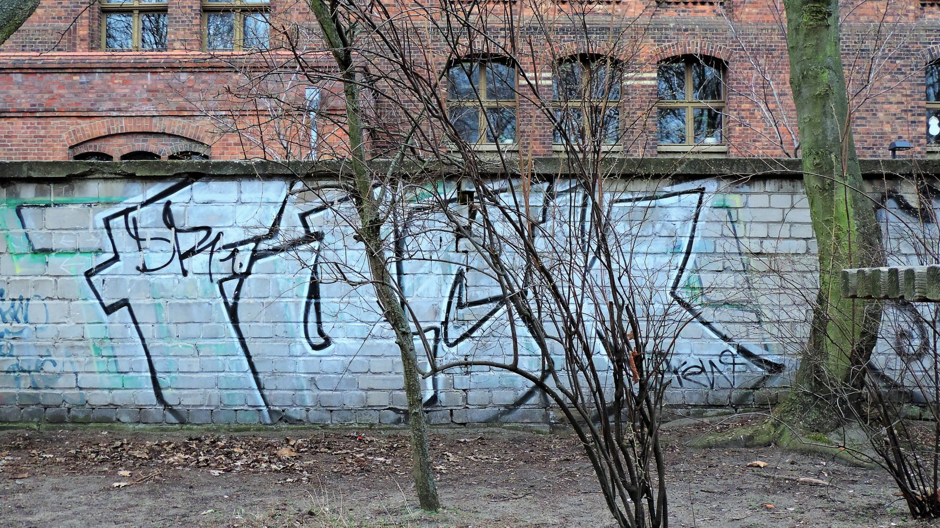 05602 | berliner mauern | berlin, graffito, writing